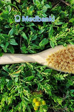 Щетка для сухого массажа натуральная щетина 30 см с ручкой